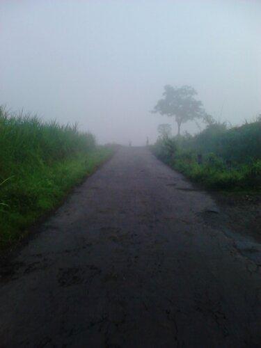 lumayan sudah tebel lagi kabutnya,tapi jaket sudah terlanjur basah sob :D